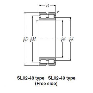 Bearing SL01-4960