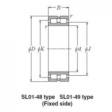 Bearing SL01-4836